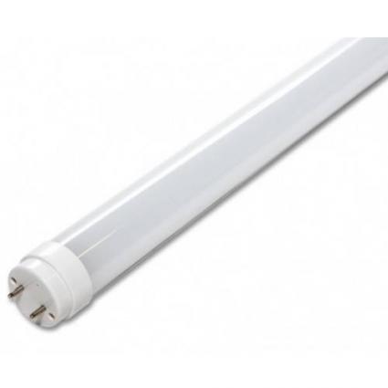 Лампи лінійні Т8